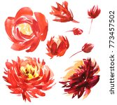watercolor floral set. colorful ... | Shutterstock . vector #773457502
