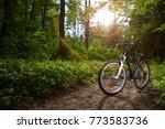 mountain biking down hill... | Shutterstock . vector #773583736