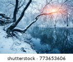 winter forest on the river at... | Shutterstock . vector #773653606