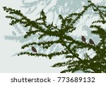 birds in the spruce forest   Shutterstock .eps vector #773689132