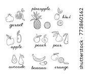 set of doodle fruit icons.  | Shutterstock .eps vector #773860162