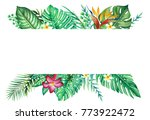 tropical forest leaves and... | Shutterstock . vector #773922472