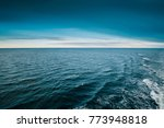 cold sea ocean and blue sky... | Shutterstock . vector #773948818