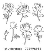 vector set of simple roses.... | Shutterstock .eps vector #773996956