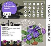 template for indoor plant... | Shutterstock .eps vector #774049768