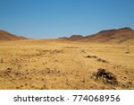 Yellow Grass Landscape At...