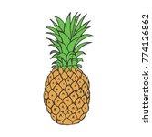 hand drawn pineapple fruit in... | Shutterstock .eps vector #774126862