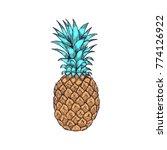 hand drawn pineapple fruit... | Shutterstock .eps vector #774126922