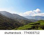 green mountain landscape in... | Shutterstock . vector #774303712