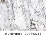 white marble texture with... | Shutterstock . vector #774443158
