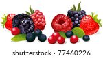 berries isolated | Shutterstock .eps vector #77460226