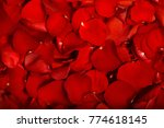 volumetric red rose petals as...   Shutterstock . vector #774618145