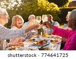 group of senior friends making... | Shutterstock . vector #774641725