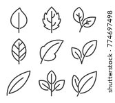 leaves line vector icon set  | Shutterstock .eps vector #774697498
