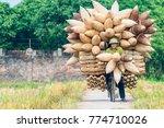 hanoi  vietnam   november 13 ...   Shutterstock . vector #774710026