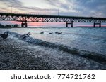 under mackinaw. beneath the... | Shutterstock . vector #774721762