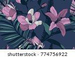vector dark colorful decorative ... | Shutterstock .eps vector #774756922