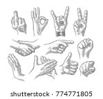 male and female hand sign set.... | Shutterstock .eps vector #774771805