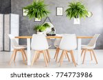 eco friendly house dining room... | Shutterstock . vector #774773986