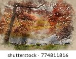 watercolor painting of stunning ... | Shutterstock . vector #774811816