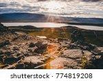 icelandic fjord view | Shutterstock . vector #774819208