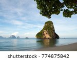 symbol of railay bay famous... | Shutterstock . vector #774875842
