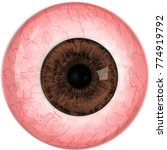 realistic human eye with  brown ...   Shutterstock .eps vector #774919792