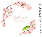 spring frame with blossom... | Shutterstock .eps vector #774925312
