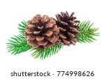 branch of christmas tree with... | Shutterstock . vector #774998626