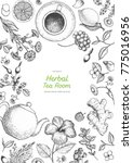 herbal tea shop frame vector...   Shutterstock .eps vector #775016956