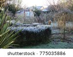 a view of a frosty cold winter... | Shutterstock . vector #775035886