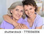 portrait of senior woman with... | Shutterstock . vector #775036006