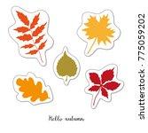 cartoon sticker with autumn... | Shutterstock . vector #775059202