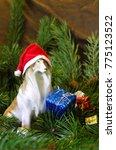 Porcelain Collie Dog In Santa...
