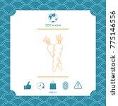 carrots symbol line icon | Shutterstock .eps vector #775146556