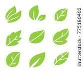leaves icon set | Shutterstock .eps vector #775180402