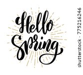 hello spring. hand drawn... | Shutterstock .eps vector #775216246