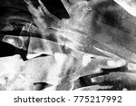 black and white abstract... | Shutterstock . vector #775217992