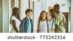 multi race classroom having...   Shutterstock . vector #775242316