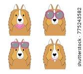 fashion cartoon cute shetland... | Shutterstock .eps vector #775243582