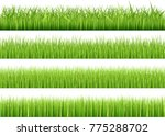 large set of fresh green spring ... | Shutterstock .eps vector #775288702