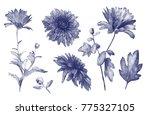 Watercolor Botanical Collectio...