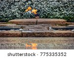 winter and the eternal flame at ... | Shutterstock . vector #775335352