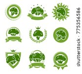 broccoli labels and elements... | Shutterstock .eps vector #775356586