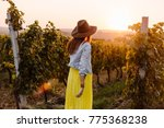 girl with a hat and yellow... | Shutterstock . vector #775368238