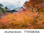 tofukuji temple balcony and the ... | Shutterstock . vector #775438306