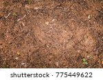 from above dry ground texture... | Shutterstock . vector #775449622