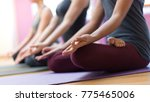 women practicing yoga together... | Shutterstock . vector #775465006