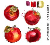 red apples painted in... | Shutterstock . vector #775512055