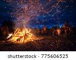 leningrad oblast  russia   july ... | Shutterstock . vector #775606525